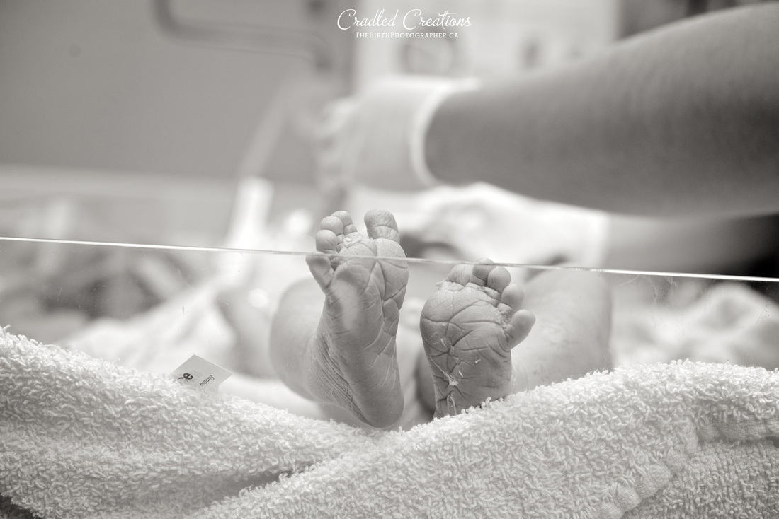baby feet birth photos cradled creations